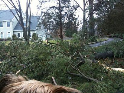 今回の東海岸のストームは大嵐、_d0100880_21225372.jpg