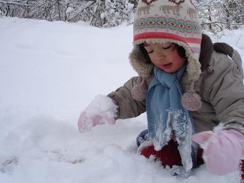 「フィレンツェ田舎生活便り~小さな村の春・夏・秋・冬」_f0106597_415424.jpg
