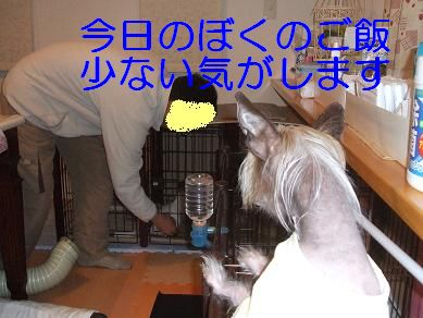 f0179203_10322655.jpg