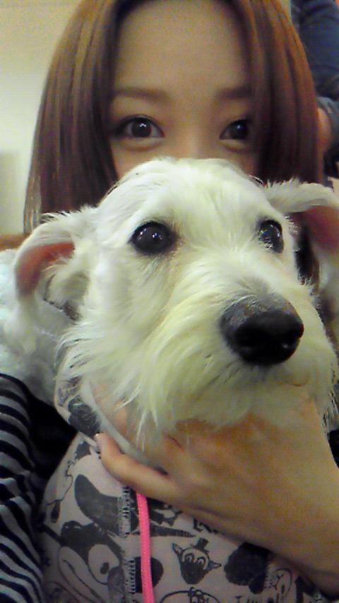 お犬様と私(^・ェ・)_f0195703_10525747.jpg