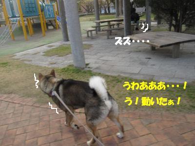 f0143123_1959143.jpg