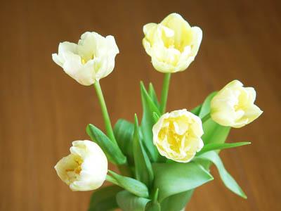 花、花、花、パン。_a0026127_1647467.jpg