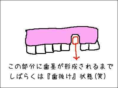 f0008935_1613354.jpg