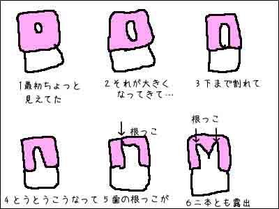 f0008935_1654747.jpg