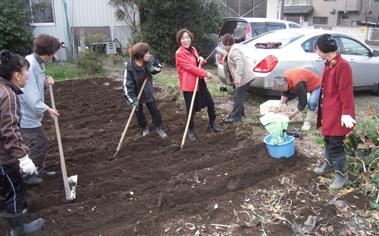 陶芸教室の菜園_e0109554_21511373.jpg
