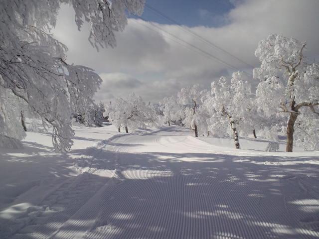雪景色_c0151965_14365260.jpg