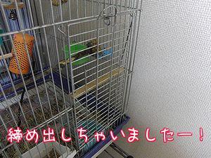 f0196665_075663.jpg