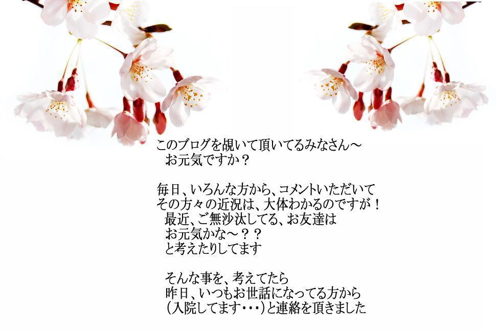 e0077875_13304413.jpg