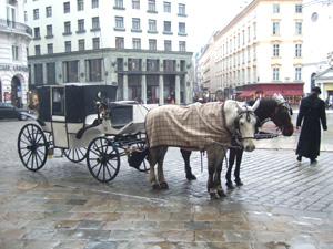 オーストリア・ウィーン<観光編>_e0030586_7533248.jpg