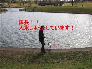 e0121589_11422455.jpg