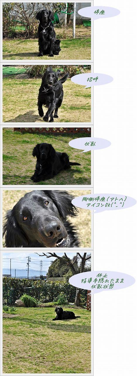 f0176499_16454185.jpg
