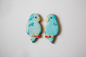 COOKIEBOY CIRCUS : クッキーボーイサーカス団 @ ROCKET_f0038600_2061834.jpg