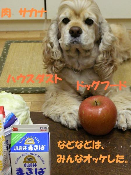 b0067012_0315138.jpg
