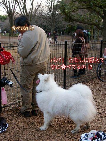 日曜日のおっきな公園_c0062832_16535334.jpg