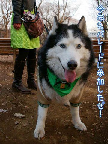 日曜日のおっきな公園_c0062832_16535996.jpg
