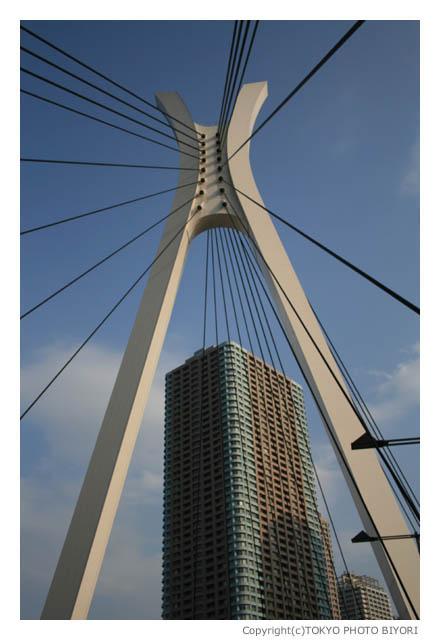 橋に囲まれた八丁堀_f0181689_196456.jpg