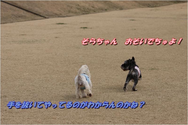 f0223295_21293270.jpg