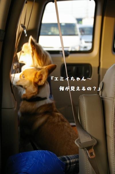 実家へGo!_c0127703_20165694.jpg
