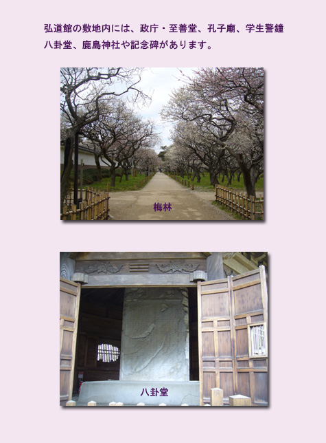 水戸 ウォーキング(1) 水戸城跡 弘道館_c0051105_1474695.jpg