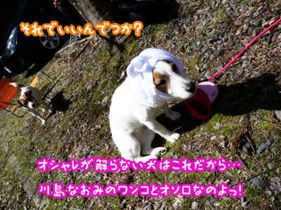 f0129214_1511631.jpg