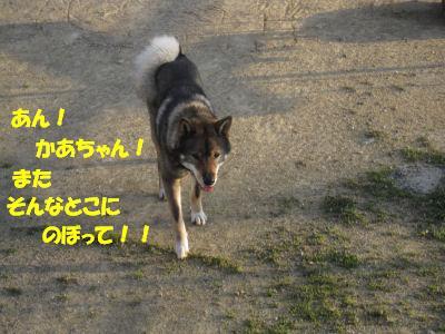 f0143123_2027103.jpg
