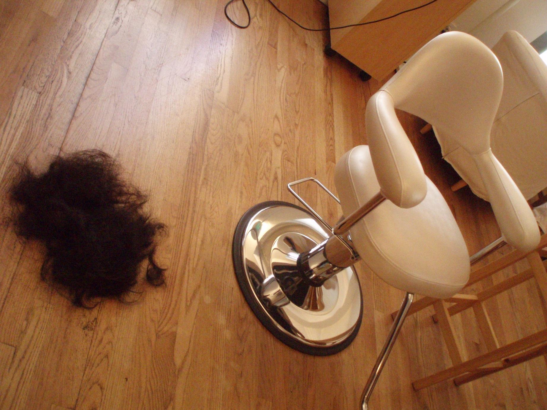 私もとうとう髪を切りました♪_f0095325_652440.jpg
