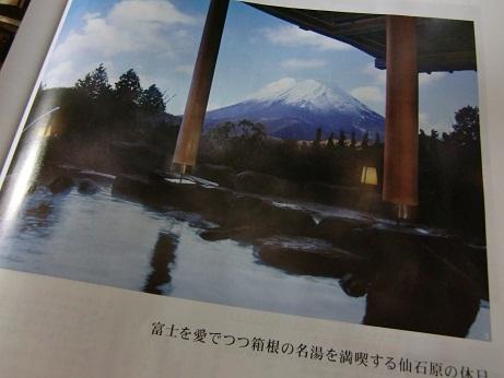 祝・還暦旅行~箱根~_c0079828_18284385.jpg