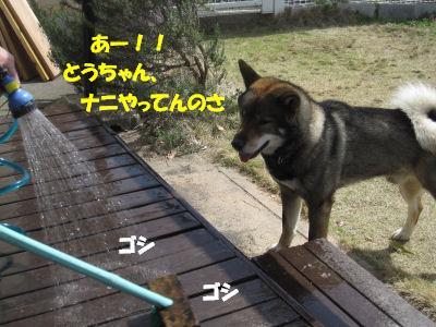 f0143123_20342754.jpg