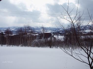 森へいこう。_a0094336_841675.jpg