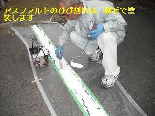 f0031037_19514517.jpg