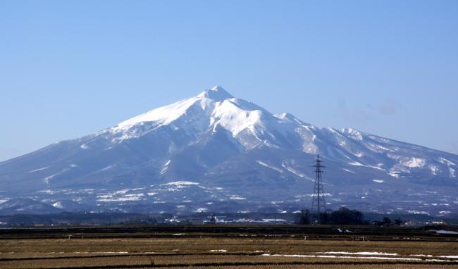 早春の岩木山&福寿草ほか_a0136293_1682317.jpg