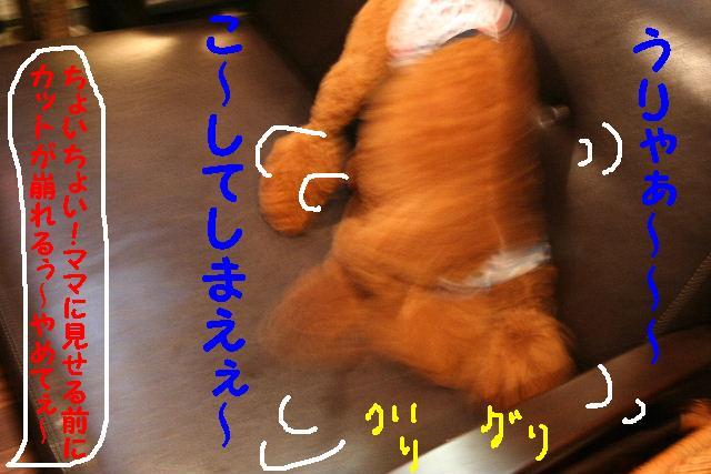b0130018_8565535.jpg