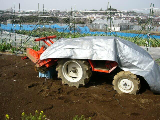 早朝の台風並みの雨風収まり・・・・畑に出てみると・・_c0222448_1119780.jpg