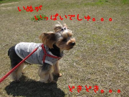 f0143386_214509.jpg