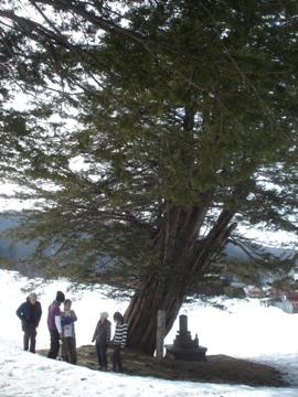 飛騨高山へ_d0130209_234997.jpg