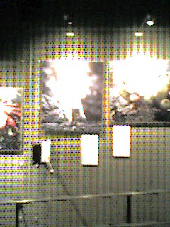 image/noriyuki-2005-08-31T10:49:12-1.jpg