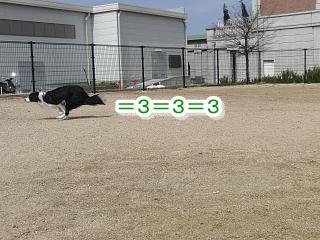 e0179321_1852156.jpg