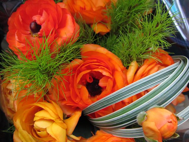 オレンジ色の花_e0048332_141417.jpg