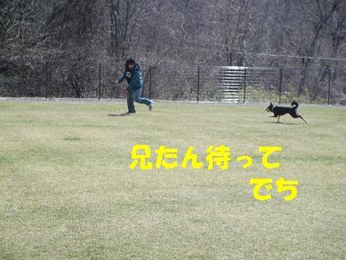 c0211642_19452087.jpg