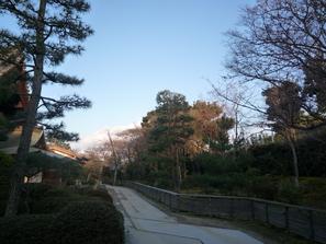 桜の着物でお出掛けの一日。_f0181251_17343163.jpg