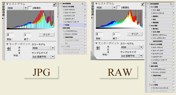 重いけど RAW_b0068658_21212791.jpg