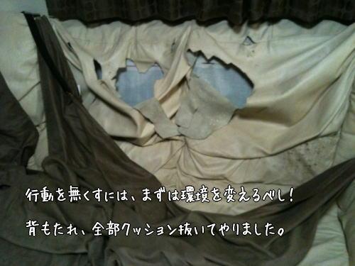 f0187974_1203991.jpg