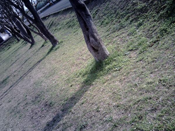 f0182883_16532645.jpg