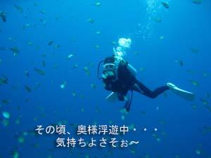 シミラン☆透明度抜群☆いかなきゃ損!!_f0144385_058962.jpg