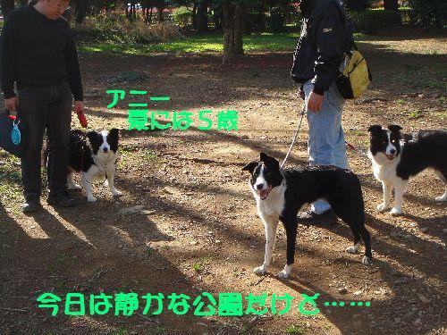 b0101991_166125.jpg