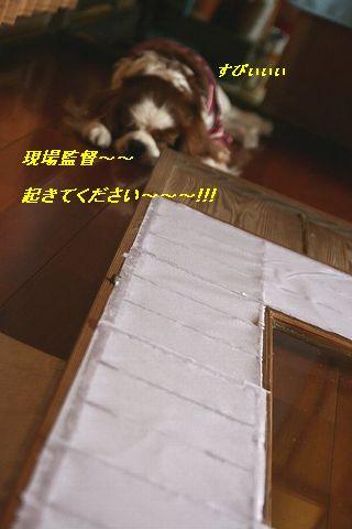 b0021297_0321039.jpg