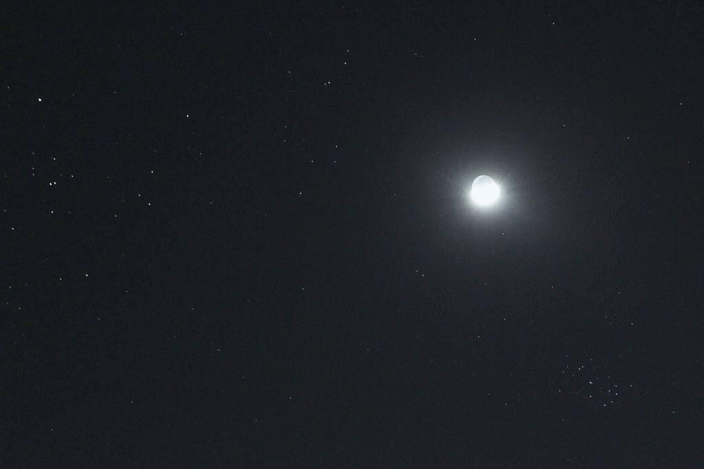 エナガ/月とスバル_b0024798_12561663.jpg