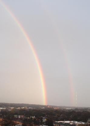 Rainbow_b0121501_1443433.jpg