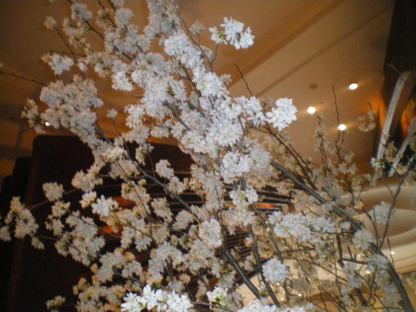 ♪春★『エッセ Spring プレゼンテーション2010』_d0004210_20454848.jpg