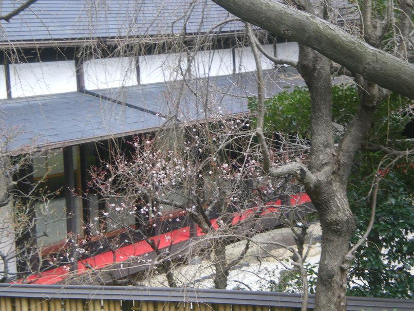 ♪春★『エッセ Spring プレゼンテーション2010』_d0004210_2201100.jpg